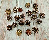 Шишки еловые натуральные декоративные ,размер 3,5-5см.