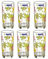 Набор стаканов LUMINARC Aime Crazy Flower G4604 (6 шт)