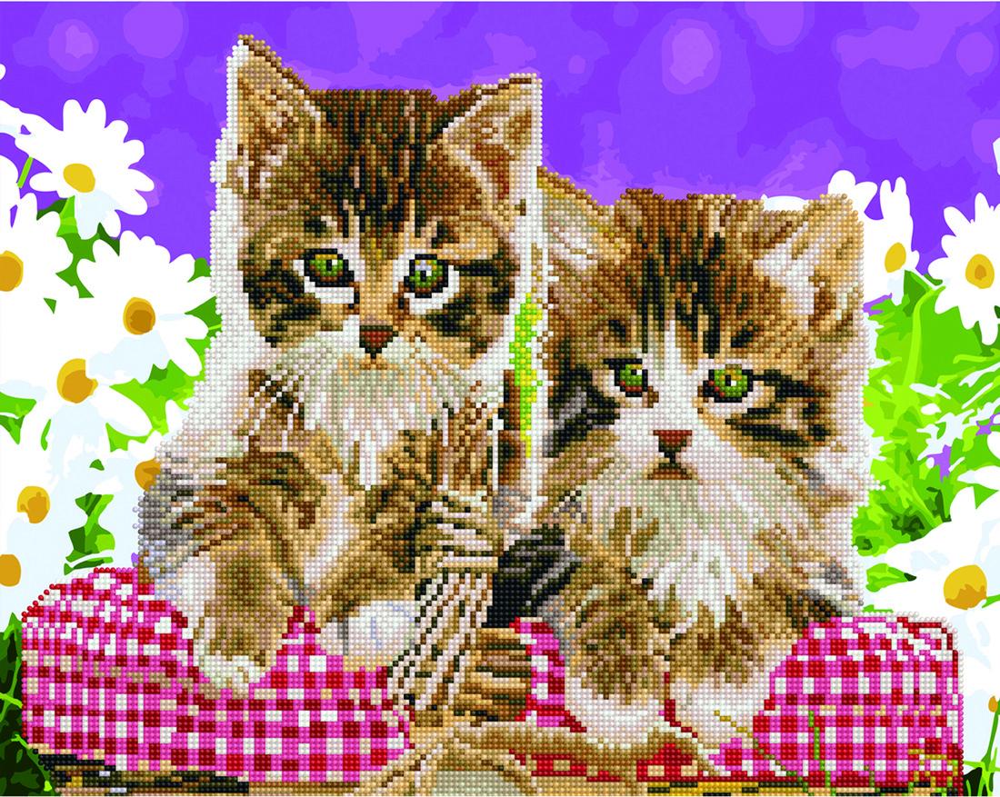 Кошенята в кошику