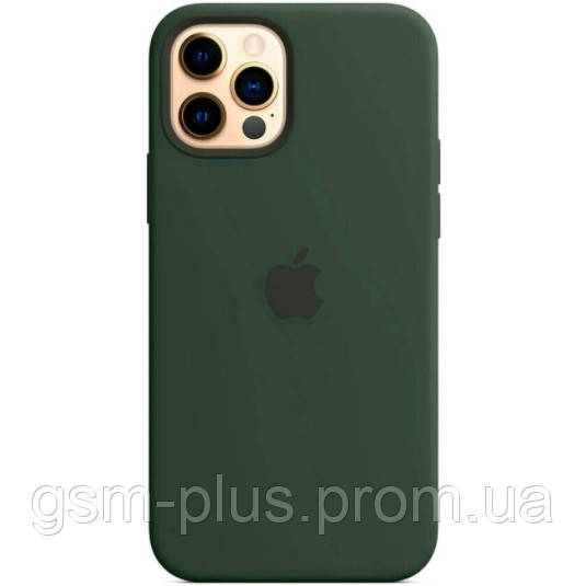 Чехол (sillicon case) для iphone 12, iphone 12 pro with magsafe and splash cyprus green
