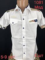 """Сорочка дитяча літня з коротким рукавом на хлопчика 5-9 років """"EMRE"""" недорого від прямого постачальника"""