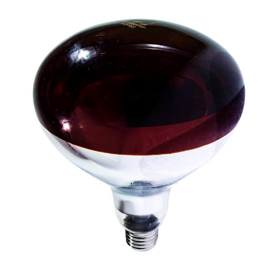 Лампа інфрачервона R125 100 Вт черв. BS