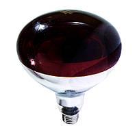 Лампа інфрачервона R125 100 Вт черв. BS, фото 1