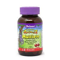 Мультивитамины для Детей, Вкус Вишни, Rainforest Animalz, Bluebonnet Nutrition, 90 жевательных конфет