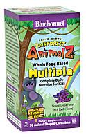 Мультивитамины для Детей, Вкус Винограда, Rainforest Animalz, Bluebonnet Nutrition, 90 жевательных конфет
