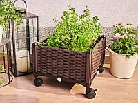 Ящик для растений Grow