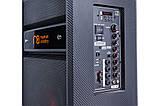 Акустическая система Maximum Acoustics MusicBAND.100, фото 3