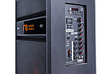 Акустична система Maximum Acoustics MusicBAND.100, фото 3