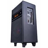 Акустическая система Maximum Acoustics MusicBAND.100, фото 4