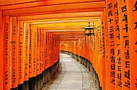 ГРУППОВОЙ ТУР в Японию «Большое путешествие из Киото в Токио»