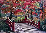 ГРУППОВОЙ ТУР в Японию «Большое путешествие из Киото в Токио», фото 2