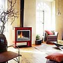 Печь-камин на дровах Invicta Phoenix, фото 2
