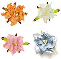 Квіти Гордении отот ScrapBerrys 5см_ЦВЕТ на вибір, фото 1