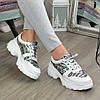 Кросівки жіночі на шнурівці, колір білий/літера, фото 5