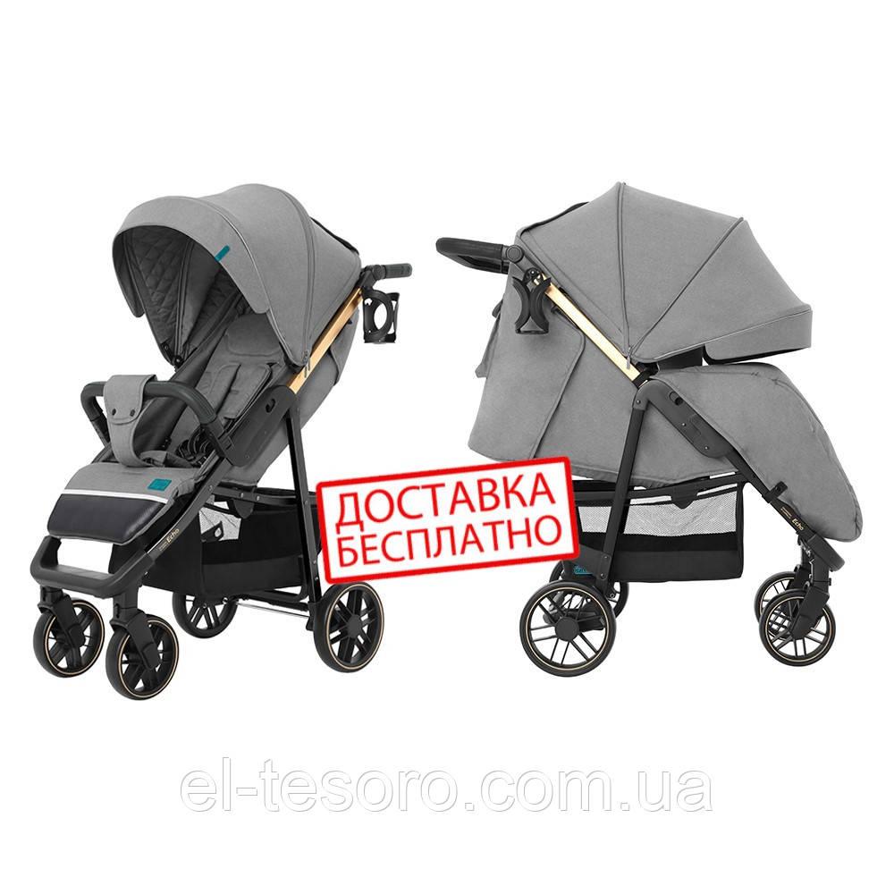 Прогулочная коляска всесезонная с амортизацией  CARRELLO Echo CRL-8508