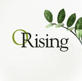 Orising (Італія)