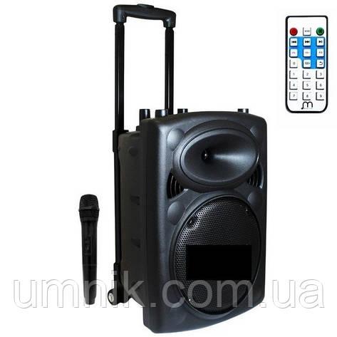 Портативна акумуляторна Bluetooth колонка з мікрофоном, 23-45-17,5 см, LT-2606XBT, фото 2