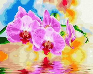 Картины по номерам 40х50 см Brushme Орхидея (GX 33255)