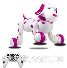 Интерактивная Собака-робот, Smart Dog, 777-338, розовая