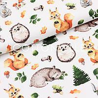 Хлопковая ткань Лесные звери