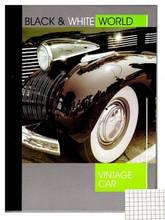 Книга А4 офсетная  96л клетка твердая ламинированная обложка ЗО-96111
