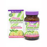 Гарцинія Формула управління Вагою Bluebonnet Nutrition Skinny Garcinia 60 капсул вегетаріанських Оригінал!