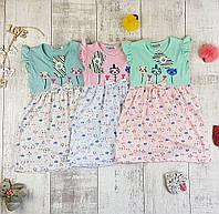 """Дитячі літні плаття """"Котик"""" № 51365, фото 1"""