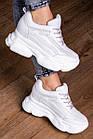 Женские стильные сникеры Fashion Penny 1673 38 размер 24 см Белый, фото 3
