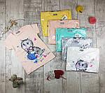 """Дитячі футболки для дівчаток """"Котик""""  №2203"""