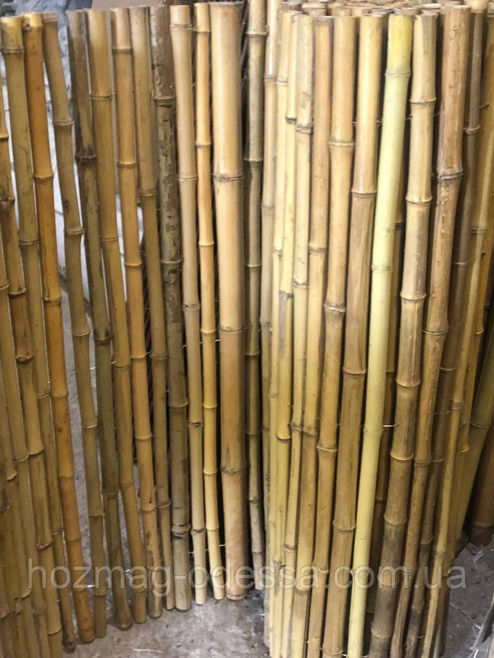 Забор бамбуковый 2,0 м *3,0 м.