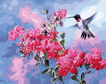 Картины по номерам 40х50 см Brushme Колибри в цвету (GX 34869)