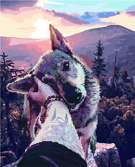 Алмазна картина + картина за номерами Вірний друг (GZS1157) 40 х 50 см (Без коробки)