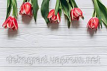 Фотофон А3 (42х29,7см) Тюльпаны на белом дереве