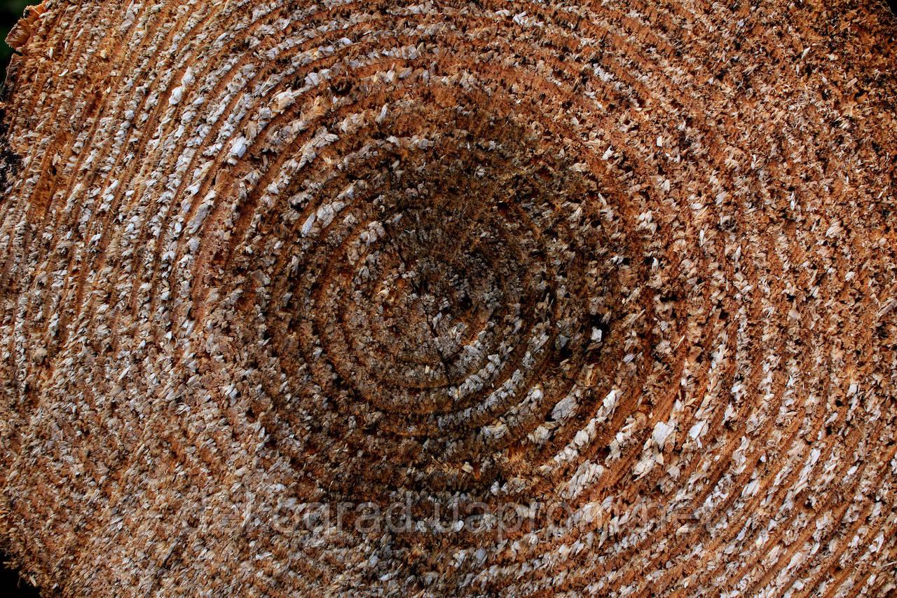 Фотофон А3 (42х29,7см) Спил дерева
