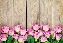 Фотофон А3 (42х29,7см) Розы на дереве
