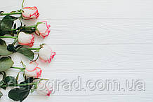 Фотофон А3 (42х29,7см) Розовые розы на белом дереве