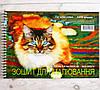 Альбом для акварельных работ Рутения 100 г/м², 30 листов, в ассортименте, фото 4