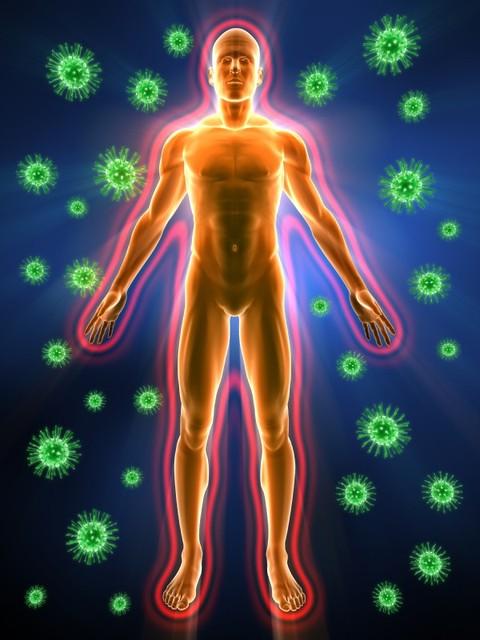 Иммуномодуляторы, Антиоксиданты, Онкопротекторы