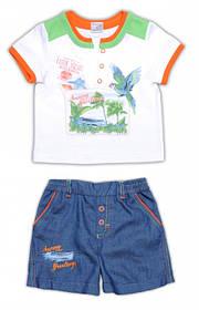 Детская тенниска и шорты для мальчика,  ТМ Garden Baby (серые шорты)