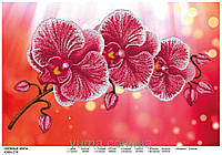 """Схема для частичной вышивки бисером на атласе """"Любимые цветы"""""""