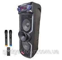 """Колонка з акумулятором Rainberg RB-1010C/ 2x10""""/ 2x100W/ 2 радіомікрофона/ BT/ SD+USB+FM/ LED"""