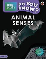 Animal Senses - BBC Earth Do You Know...? Level 3