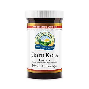 Gotu Kola NSP, Готу Кола НСП, США, фото 2