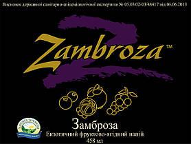 Zambroza Замброза, НСП, США, NSP. Антиоксидант. Эликсир здоровья., фото 3