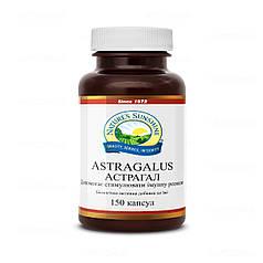 Астрагал, НСП,  Astragalus NSP, США, 150 капсул