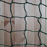 Загороджувальна сітка д 5,5 осередок 7,5 огороджувальна сітка захисна сітка., фото 3
