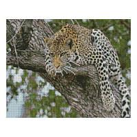 """Алмазная мозаика """"Леопард на дереве"""" FA10050"""