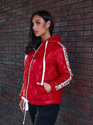 Жіноча демісезонна куртка батал, 48-50, фото 2