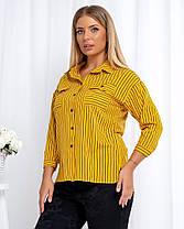 Жіноча гірчічна сорочка в смужку, 46, фото 2