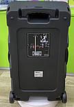 Колонка аккумуляторная Sky Sound-7272 15 дюймов с радиомикрофоном 200W (USB/FM/Bluetooth/TWS), фото 4